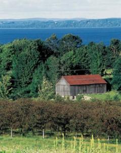 Kirschplantagen rund um die Seenlandschaft des Lake Michigan.